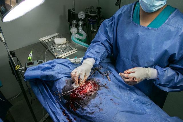 veterinář u operace